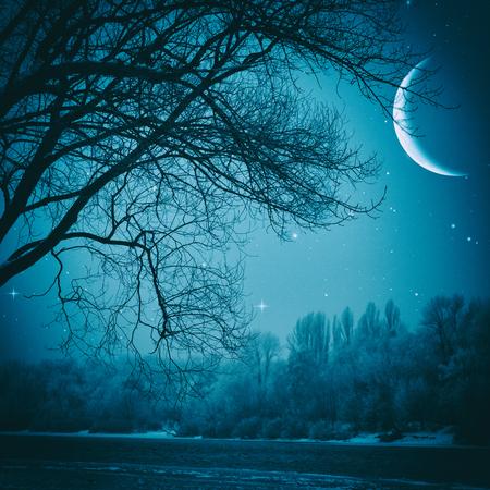 paisaje natural: Noche fantasmag�rica. Paisaje natural abstracto
