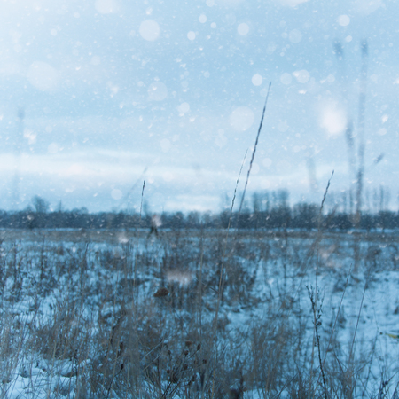blue christmas: Seasonal backgrounds with snow covered field under moody skies