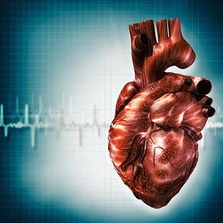 antécédents médicaux et de bien-être Résumé avec le coeur humain