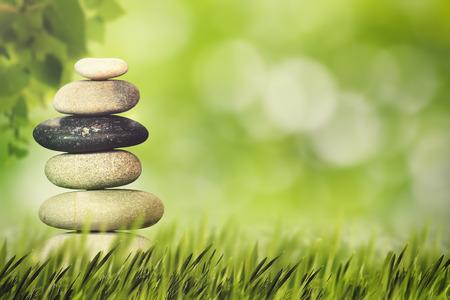 naturel: Bien-être, la santé et le concept de l'harmonie naturelle. milieux naturels Résumé