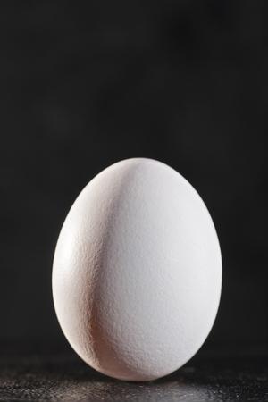 ovoid: White egg against dark backgrounds Stock Photo