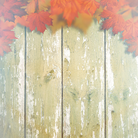 hojas antiguas: Abstract autumnal backgrounds with maple leaves over old wooden desk Foto de archivo