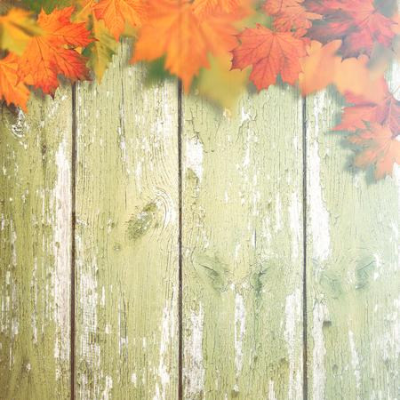 hojas antiguas: antecedentes otoñales abstractos con las hojas de arce sobre el viejo escritorio de madera