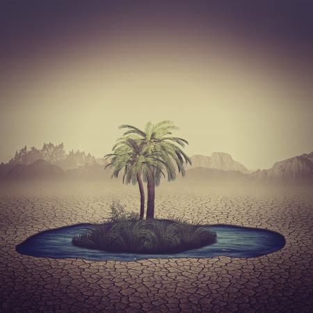Oasis en el desierto, fondos naturales abstractos para su diseño Foto de archivo