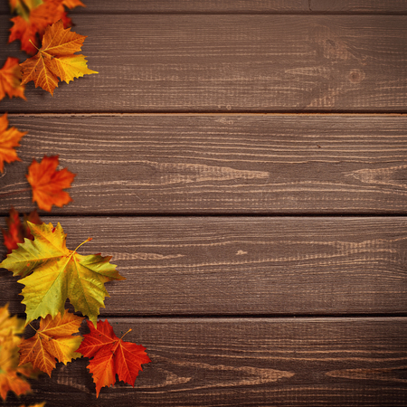 Abstract autumnal backgrounds. Fall maple leaves over vintage wooden desk 版權商用圖片