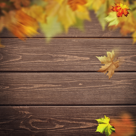 Abstract autumnal backgrounds. Fall maple leaves over vintage wooden desk Standard-Bild