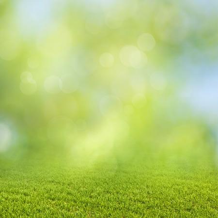 Funny seasonal backgrounds with bright foliage and beauty bokeh Standard-Bild