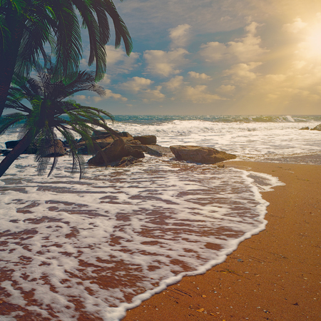 Tropical Heaven. Natural sea and ocean backgrounds Standard-Bild - 119831407