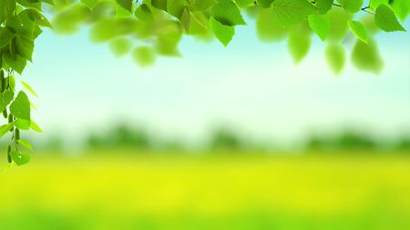 Abstract art backgrounds with green foliage. Environmental backgrounds Standard-Bild - 146288630