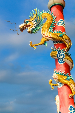 Chinese dragon in the shrine, Thailand photo