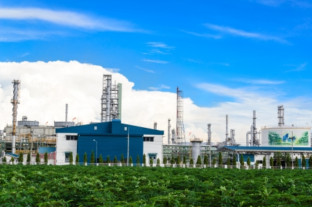 cassava: Petrochemical plant with the cassava trees foreground in Thailand