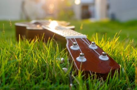 four objects: Ukulele put on the grass with the sunset behind