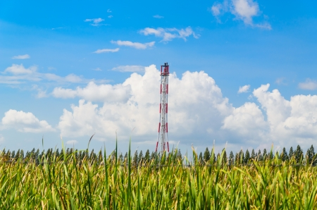 Refinery flare with the grass foreground and blue sky background photo