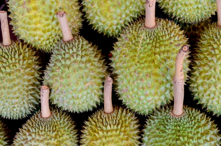 Durians from Thailand with black background Stock Photo