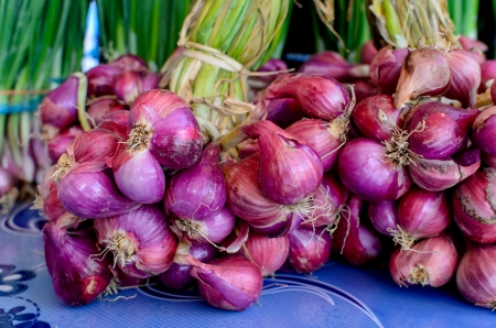 Cachos de cebola verde em exposi��o em um mercado dos fazendeiros, Tail�ndia Banco de Imagens