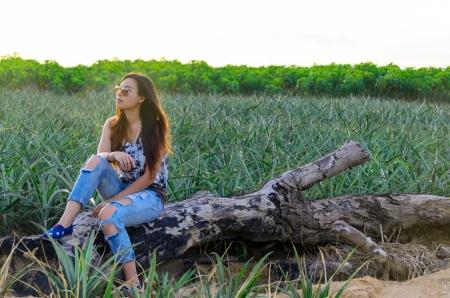 Retrato de uma garota atraente em um campo de abacaxi com p�r do sol Banco de Imagens