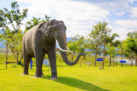 Statue of an elephant on the field, Thailand photo