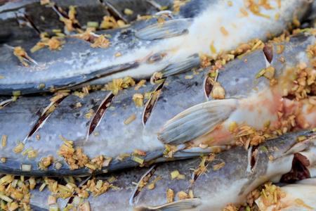 Cat fish prepare before cooking Stock Photo