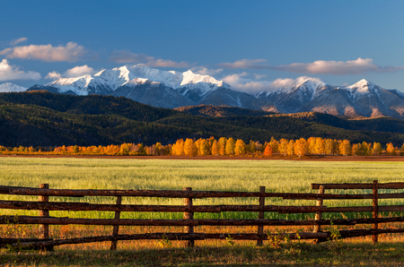 Farm field of cereals with fence opposite snow mountains in autumn