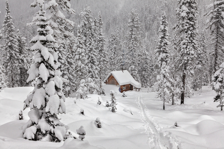winter's tale: Winters Tale. Small cottage in a beautiful snow forest.