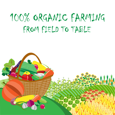 kitchen garden: Organic farming background. Frame with plenteous fields landscape and vegetable basket. Agriculture background Illustration