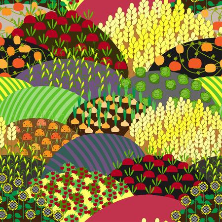 Overvloedig Fields naadloos patroon. Oogst achtergrond. Velden met verschillende Agricultural Culture .. Pompoenen, maïs, tomaten, biet, kool, wortel, Zonnebloem, Lavendel en Groen. landbouw landschap