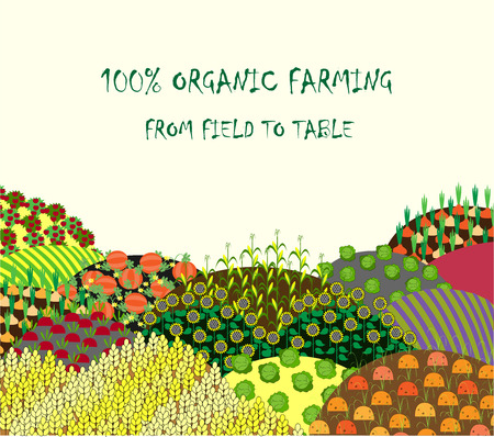 seedlings: Organic farming background. Frame with plenteous fields landscape. Place for text. Agriculture background