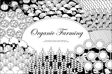 Organic Farming Background. Frame With Plenteous Fields Landscape ...