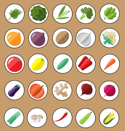 courgette: Fresh and organic vegetables. Icon set Illustration