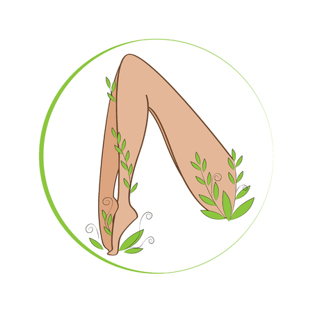 woman legs: Female legs winded with stylized plant. Organic feet cosmetics symbol. Female legs health sign. Long and slim woman legs and leaves. Illustration