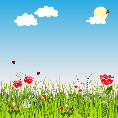 uncultivated: Summer meadow landscape. Illustration