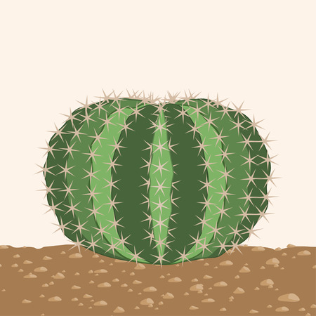 sandy: Big round cactus on a sandy ground Illustration