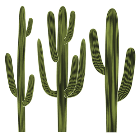 Isolated Saguaro Cactus Set. Vector illustration