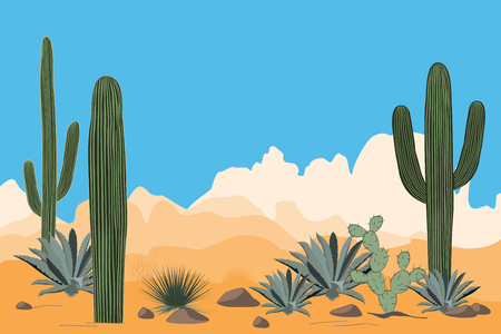 Scenery of the arid desert. Landscape of a valley with Saguaro cacti. Illustration
