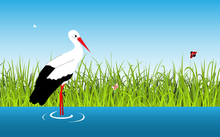 Cartoon vector landscape with stork and lake Illustration