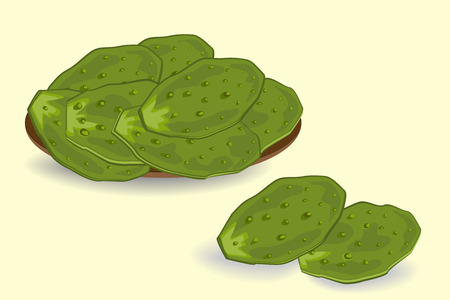 Edible green cactus leaves or nopales. Hand drawn vector illustration