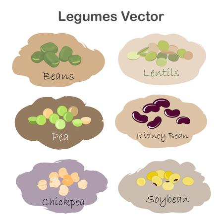 白い背景に分離された別の漫画のマメ科植物のラベルのセット。腎臓、大豆、緑豆、エンドウ豆、ひよこ豆、レンズ豆。  イラスト・ベクター素材