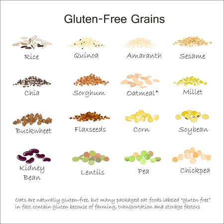 A variety of gluten free grains Stock Illustratie