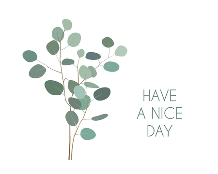Have a nice Day greeting card with silver dollar Eucalyptus plant branches. Hand painted eucalyptus elements isolated on white background