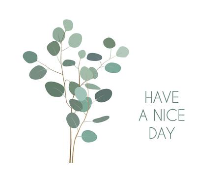 Tenga una bonita tarjeta de felicitación del día con ramas de planta de eucalipto de dólar de plata. Elementos de eucalipto pintados a mano aislados sobre fondo blanco.