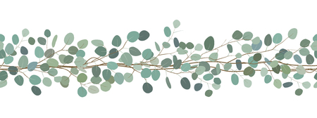 Seamless border of a eucalyptus branches. Floral frame. Vector hand drawn illustration. White background.