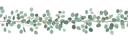 Elegant seamless border of a eucalyptus branches. Floral frame. Vector hand drawn illustration.