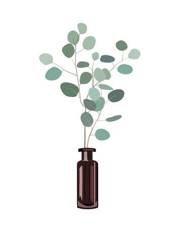 Eucalyptus Branches In A Dark Bottle Vase On The White Background