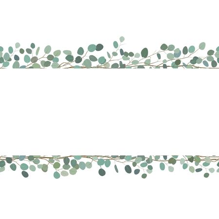 Bordures sans couture élégantes de branches d'eucalyptus. Cadre floral ou carte de voeux. Vecteur Vecteurs