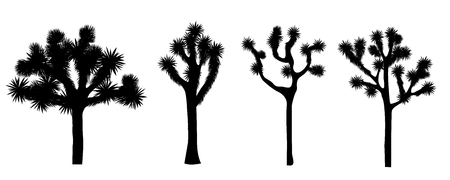 Joshua tree isolated on white background. Vector collection. Desigh element with Yucca brevifolia black silhouette.