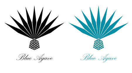 Blue agave or tequila agave plant agave icon design. 矢量图像