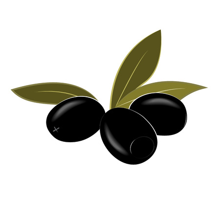 Cartoon black pitted olives isolated on white. Vector illustration
