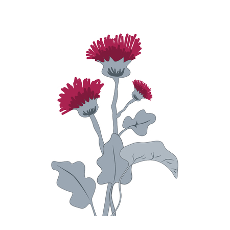 Thistle or burdock flowers. Cartoon thistle isolated on white, vector illustration