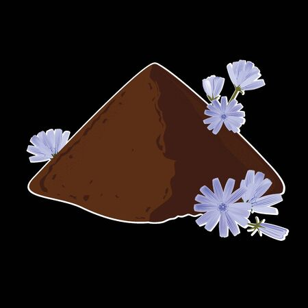 Instant chicory root roasted powder, and fresh chicory flowers. Natural source of inulin, healthy substitute of coffee. Isolated vector on black background