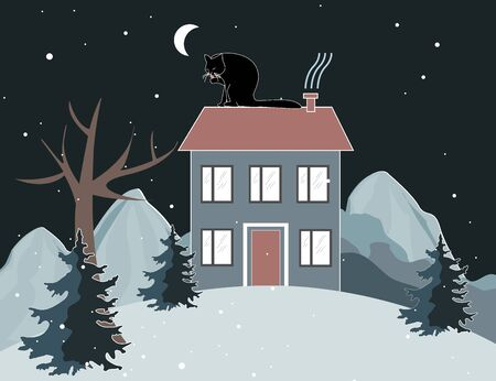Winter mountains landscape with a cat is seating on the house roof. Trees and house on the hill at night. Winter background Archivio Fotografico - 132140617